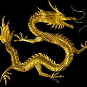 The Technology behind Live Dragon Tiger Casinos