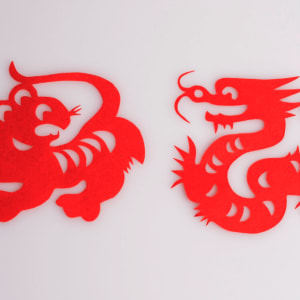 The Basics of Playing Online Dragon Tiger